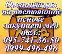Организация на постоянной основе закупает мёд